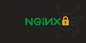 Securing NGINX Web Server